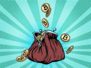 wallet bitcoins