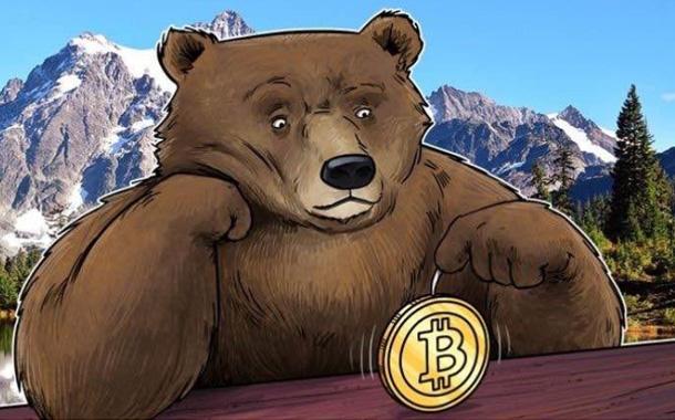Как себя вести на медвежьем рынке биткоина?