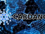 Cardano-Shelly-Update