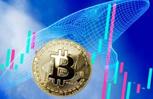 Bitcoin-whale