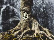 bitcoin-tap-root