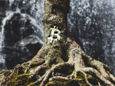 bitcoin-tap-root